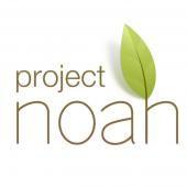 Projekt Noa