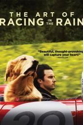 فن السباق تحت المطر