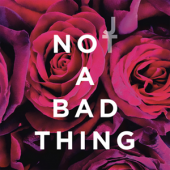 'ليس شيئًا سيئًا' (قرص مضغوط منفرد)