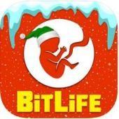 """""""BitLife"""" - gyvenimo simuliatorius"""