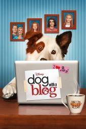 Hund mit einem Blog