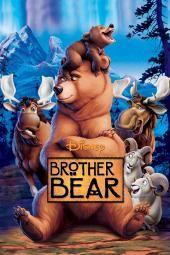 الأخ الدب
